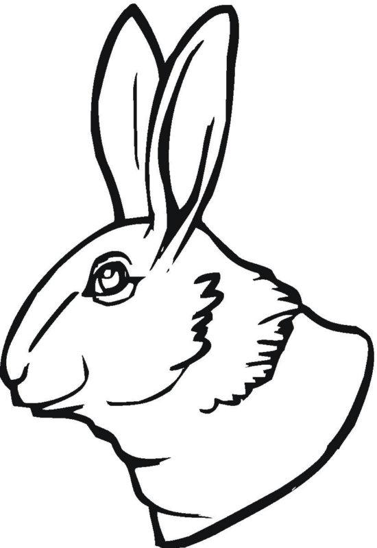 Bunny Head Coloring Page