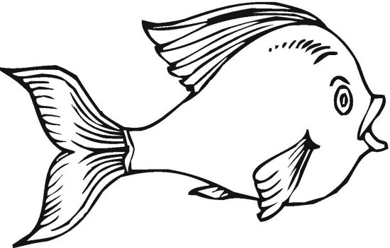 coloring page is one of the coloring pages listed in the fish coloring ...