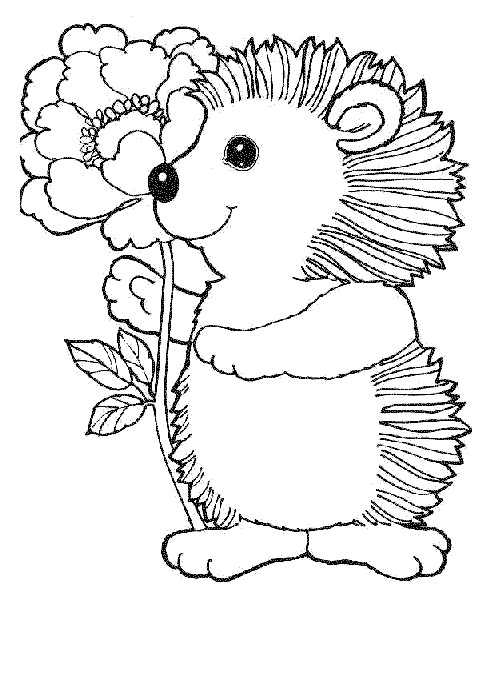 Flower and Hedgehog Coloring Page
