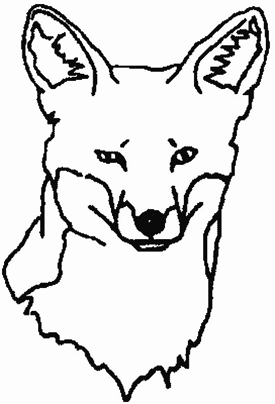 Foxy Faces Coloring Page - Color Book