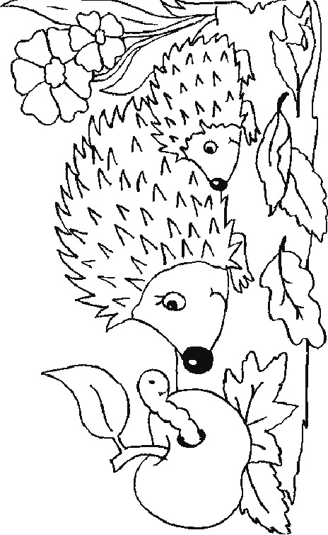 Prickly Parent Hedgehog Coloring Page