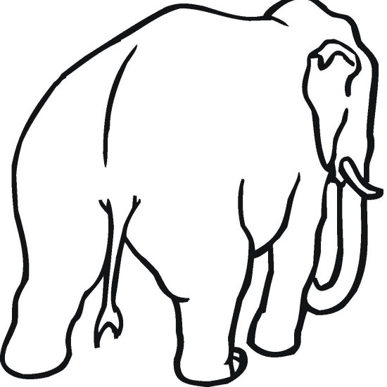 Rear of Elephant Coloring Page