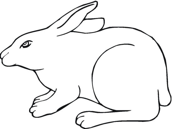 Silhouette Bunny Coloring Page