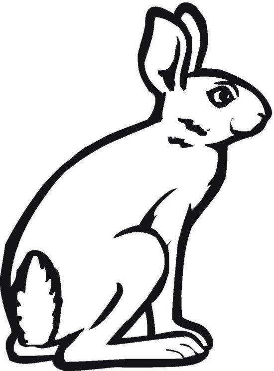 Sitting Bunny Coloring Page