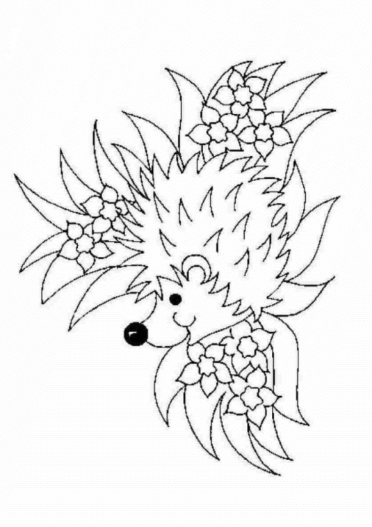 Camouflage Hedgehog Coloring Page