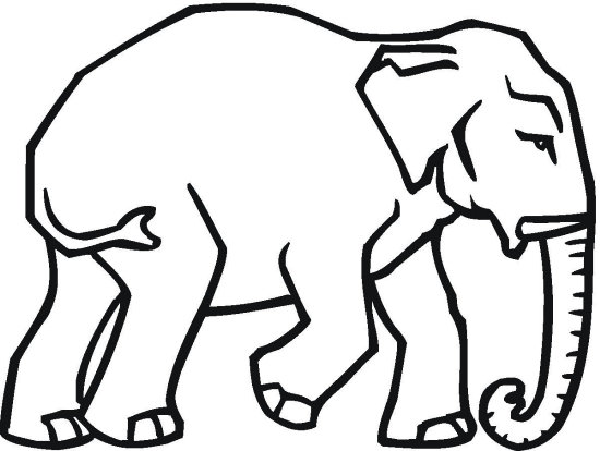 Republican Elephant Coloring Page
