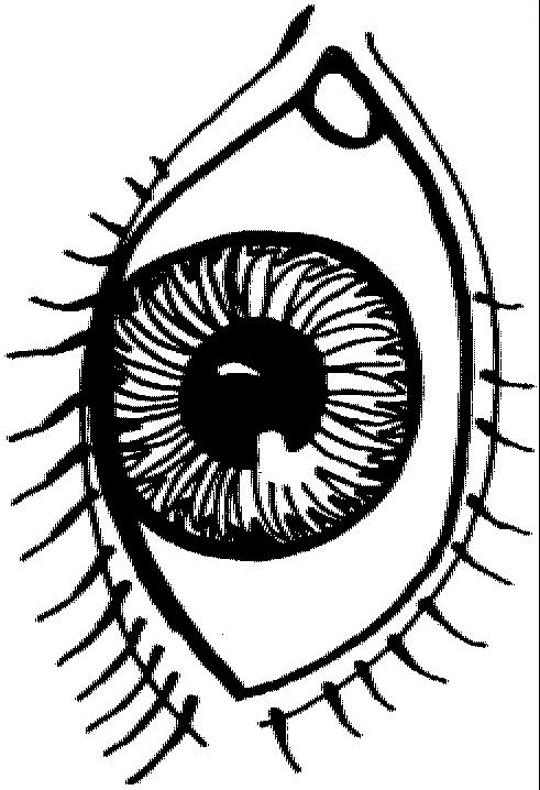 Eye Coloring Page