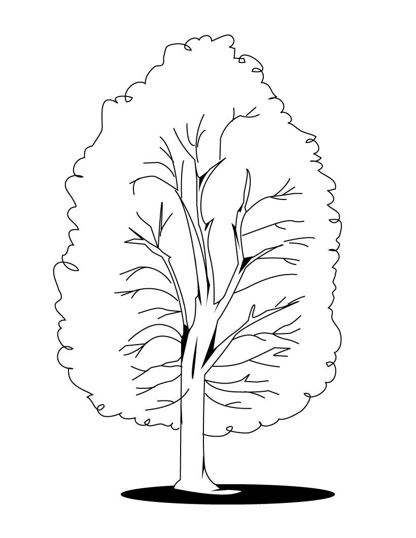 Trees Coloring Page - Color Book