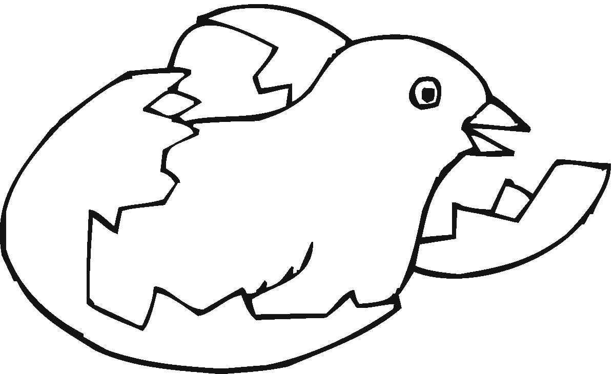 zaboomafoo coloring pages - photo #15