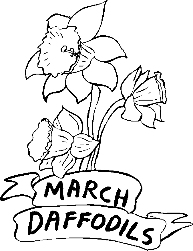 March – Daffodils Coloring Page